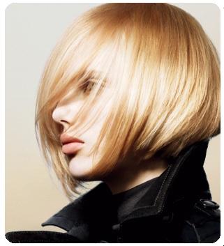 Normal Hair Type